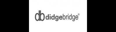 Didgebridge