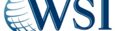WSI Expert Solutions