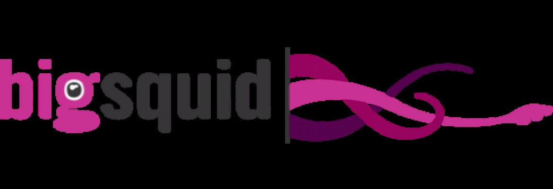 Big Squid Interactive