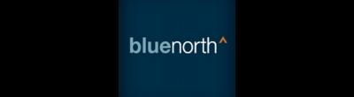 Blue North Strategies