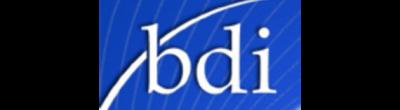 Brand Developers Inc